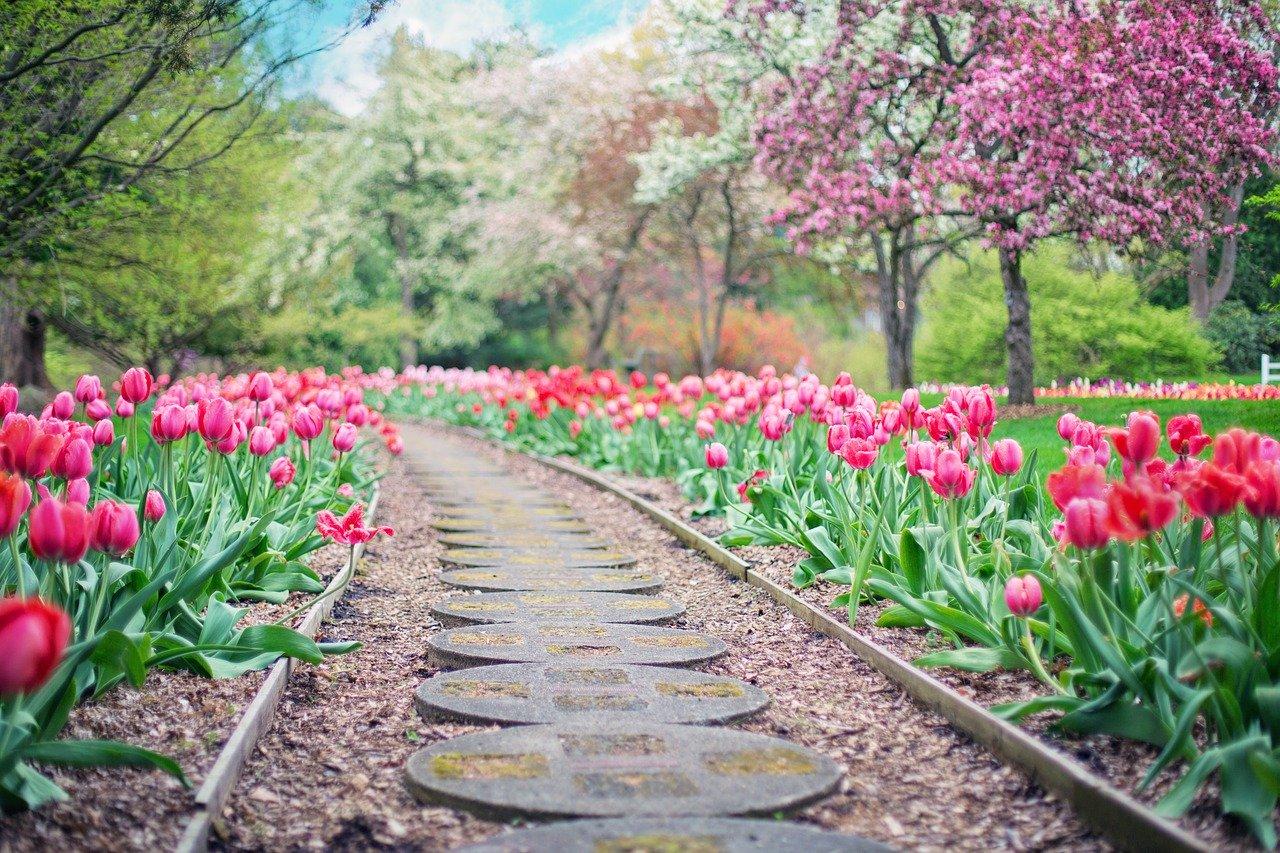Przy planowaniu ogrodu należy uwzględnić możliwe zaangażowanie właściciela