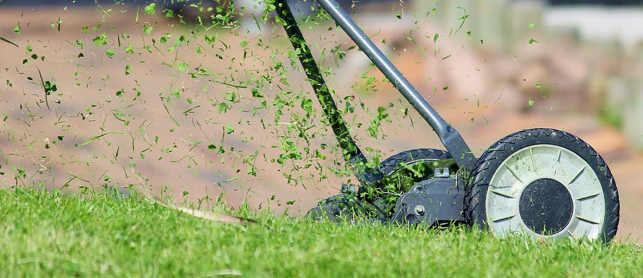 Co wybrać do koszenia trawnika?